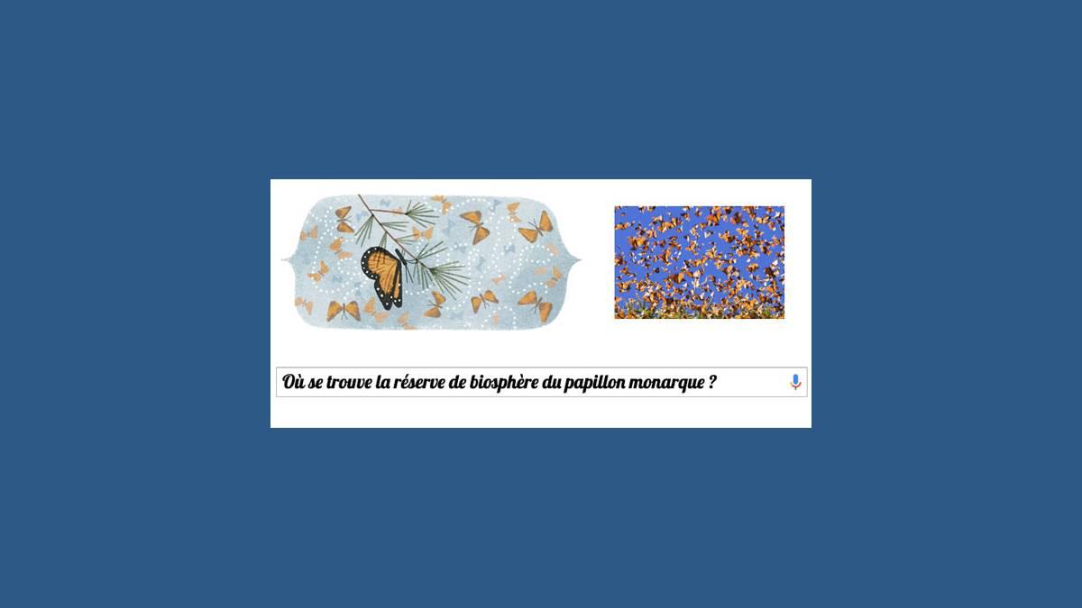 Doodle Google papillon monarque