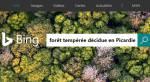 Équinoxe de printemps 2017 : Bing nous propose une « forêt tempérée décidue »
