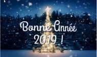 Voeux PPS MMS SMS Bonne année 2019